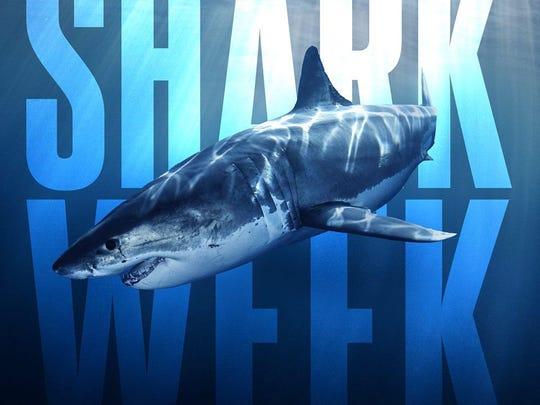 event-shark week