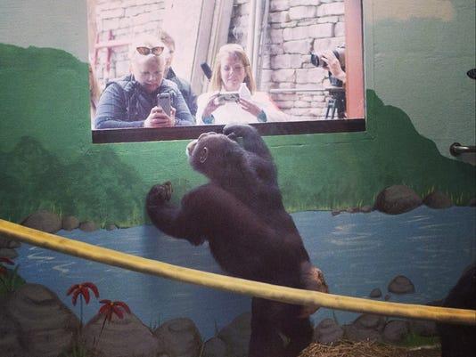 Primate Shot.jpg