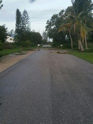 Vegetation is strewn on the ground on Sanibel roads.