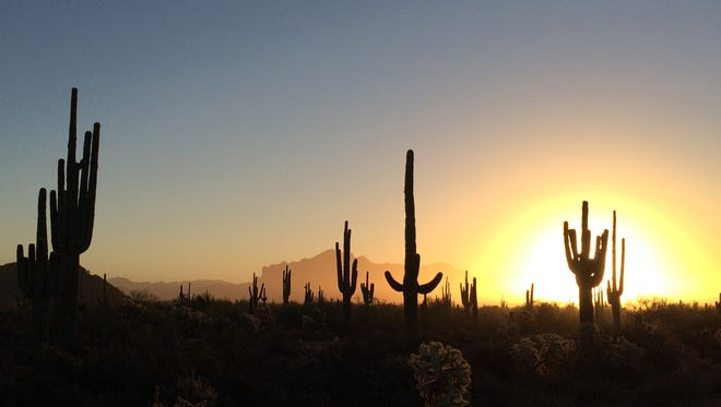 Dan Kosisky recently captured this Sonoran Desert sunrise at Usery Mountain Regional Park in northeast Mesa.