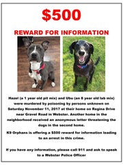 K9 Orphans Incorporated offering a reward for information
