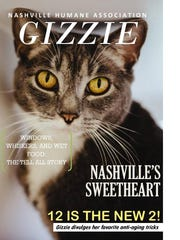Gizzie even had a turn as Nashville Humane's cover