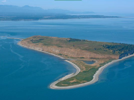 Protection Island. Photo: Washington Dept. of Ecology.