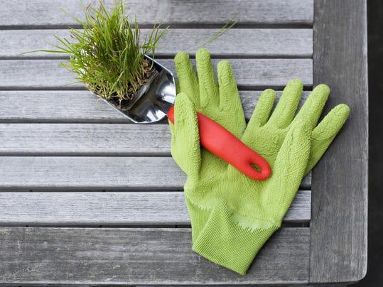 vtd 0102 Master Gardener .VTDPresto