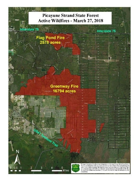 Wind blows Greenway Fire near US 41 and homes southeast of Naples