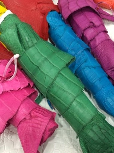 Schedule a tour with Alligator Leather Artisans, 111 Bourque Rd., Lafayette, and see colorful Alligator skins and how they're processed.