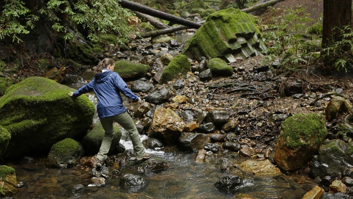 Megan Lilla, left, a lands program assistant with the Land Trust of Napa Valley, walks up a trail beneath redwood trees at the Archer Taylor Preserve in Napa, Calif.