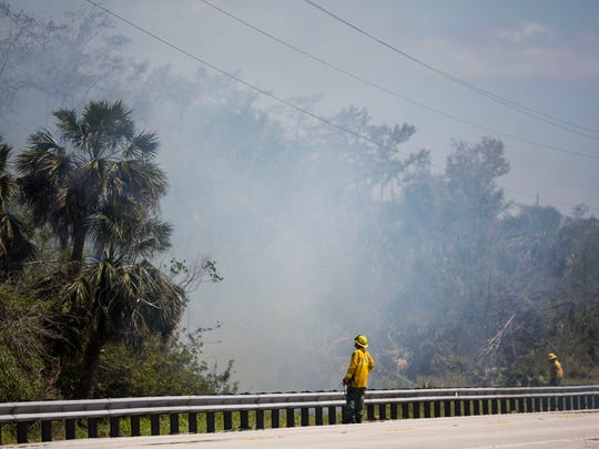 Forest Service firefighters control a planned burnout for the Greenway Fire off U.S 41 at Tomato Road on Thursday, March 29, 2018.