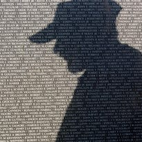 Vietnam veterans group seeking photos of 190 Tennesseans killed during war