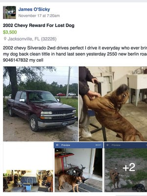 Screengrab of a Facebook post James O'Sicky has left on several groups asking for the safe return of his dog.