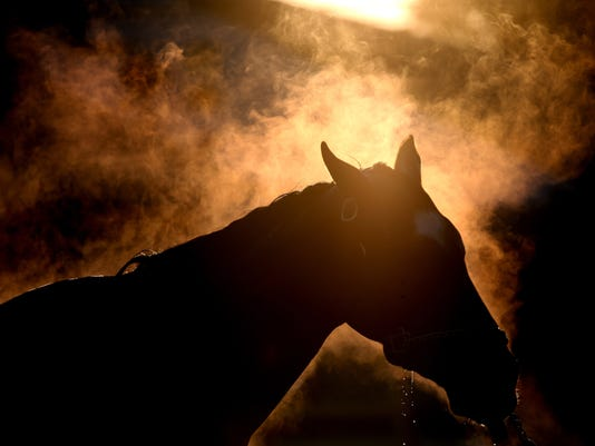 2015 Kentucky Derby - Previews