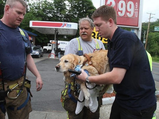 Brewster firefighter Marty Miller and Xtra Mart store manager Paul Schwartz carry Figo, an injured guide dog, to a fire vehicle for transport to Middlebranch Veterinary.