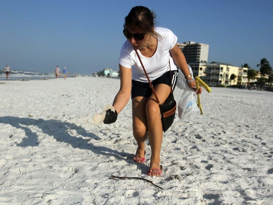 5th of July Cleanups are planned at Crescent Family Beach and Newton Park at Fort Myers Beach.