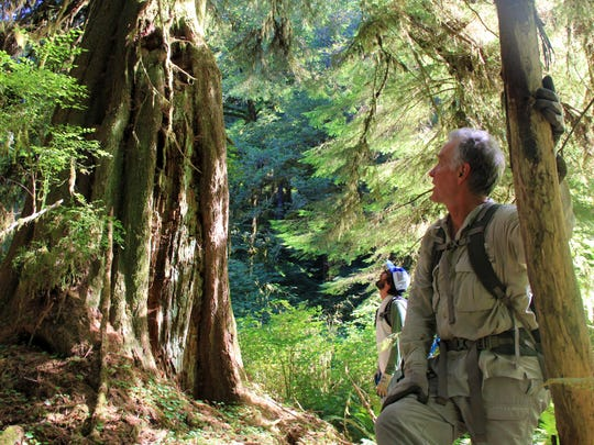 Zach Tvedt explores the proposed Devil's Staircase Wilderness in the Coast Range east of Reedsport.