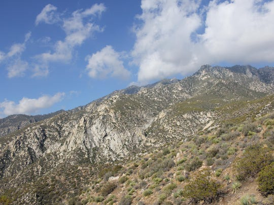 The Skyline Trail in Palm Springs takes hikers from the desert floor at the Palm Springs Art Museum to the upper tram station in the San Jacinto wilderness. It's among the most challenging hikes in the nation, experts say.