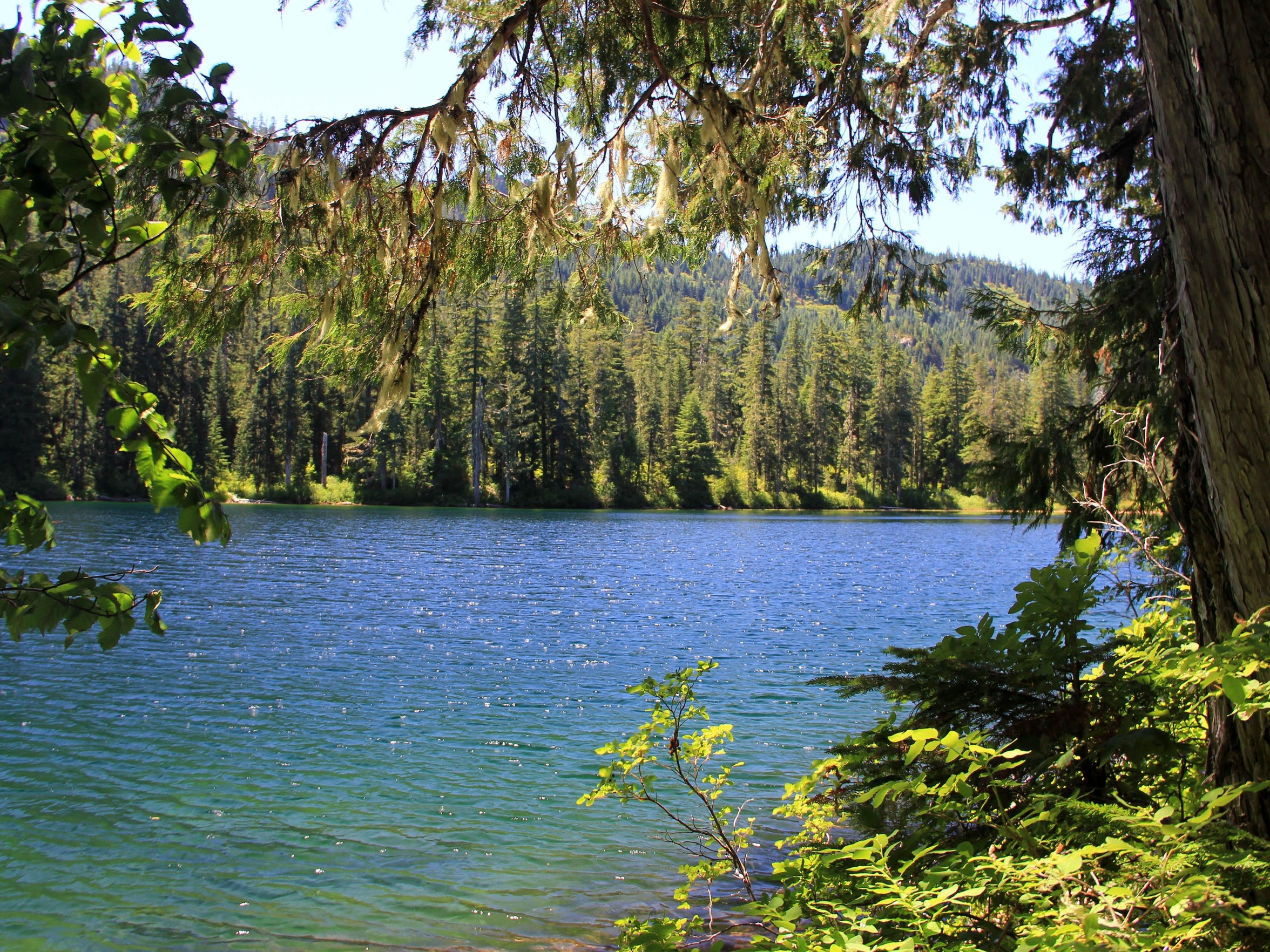 Opal Lake is a pretty mountain lake and the headwaters of Opal Creek.
