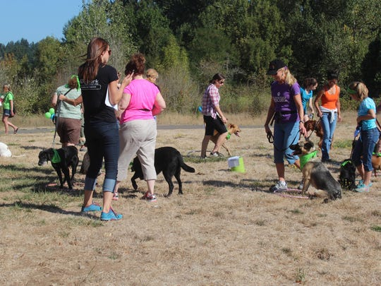 Participants play a version of musical chairs with their dogs at a previous Walk-n-Wag fundraiser.