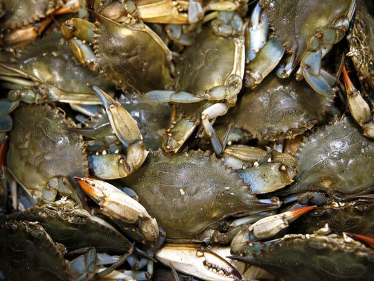 Panacea Blue Crab Festival is this weekend with a parade at 10 a.m. on Saturday.