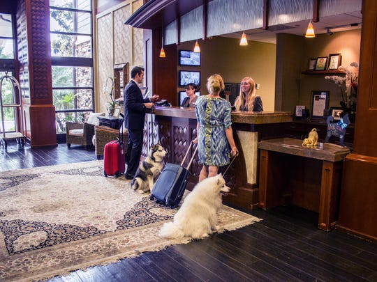 Dogs and their owners check-in at the West Inn & Suites in Carlsbad.