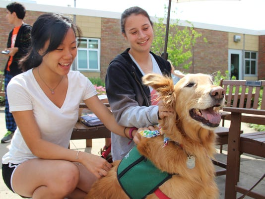 Therapy dogs ease exam stress at Wyoming HS