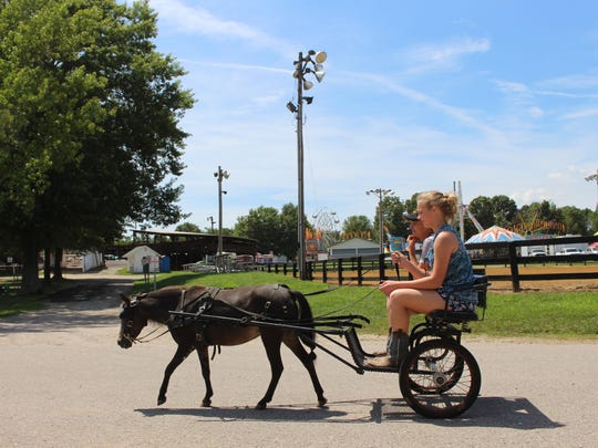 Sydney Cobb, from Owen County, takes a friend for a ride with Coco Chip, her miniature horse, at the Boone County Fair on Aug. 8. The fair continues through Saturday, Aug. 13.