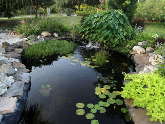 garden03.jpg