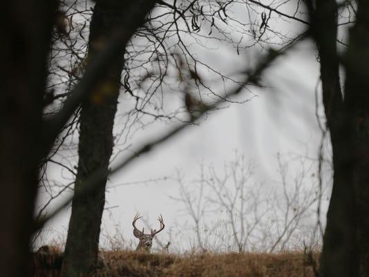 1 a1 lead deer preserves