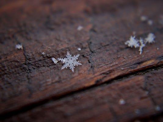 EDay-Snowflake2.jpg