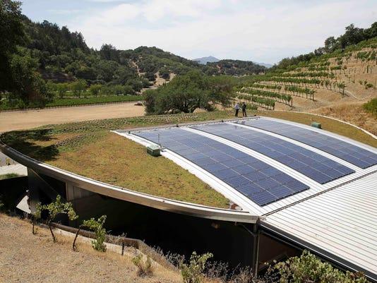 Homes Green Roof Wine_Atki.jpg