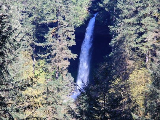 The Silver Falls Loop, a road biking route that connects Silverton and Silver Falls State Park, showcases views including North Falls and Silver Creek.