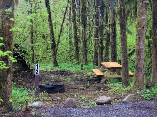 A campsite at Bear Creek Campground, located on North Fork Road in the Little North Santiam canyon.