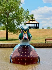 """Wally the Wood Duck"" landed Tuesday on Lake Weeks"