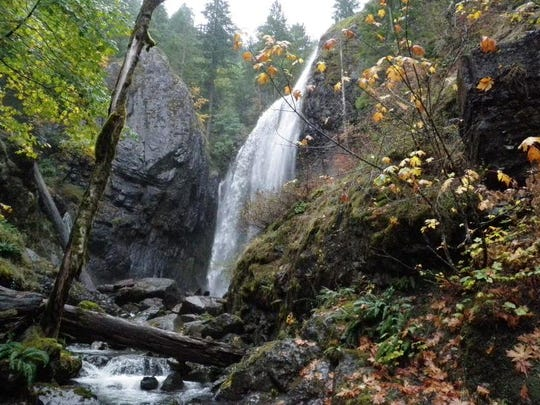 Beautiful 90-foot-tall Henline Falls is in the Opal Creek Wilderness. It?s a nice hike even in the rain.