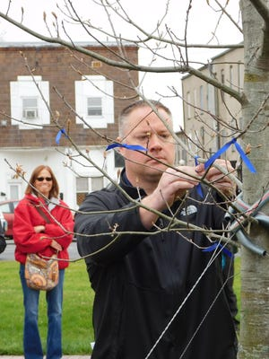 Clyde fire Chief Craig Davis ties a blue ribbon onto the Scott Myers Memorial Tree during the Clyde Arbor Day Ceremony several years ago next to the municipal building.