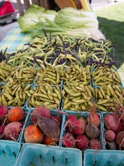 The Pittsford Village Farmers Market is held every Thursday evening from mid-June through mid-October at the Pittsford Community Library's parking lot in the village. There is also a Pittsford Farmers Market on Tuesdays and Saturdays in the parking lot of Pittsford Colony Plaza, 3400 Monroe Ave.