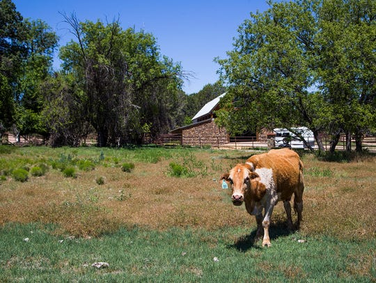 The Terra Farm + Manor, 32 miles northwest of Prescott,