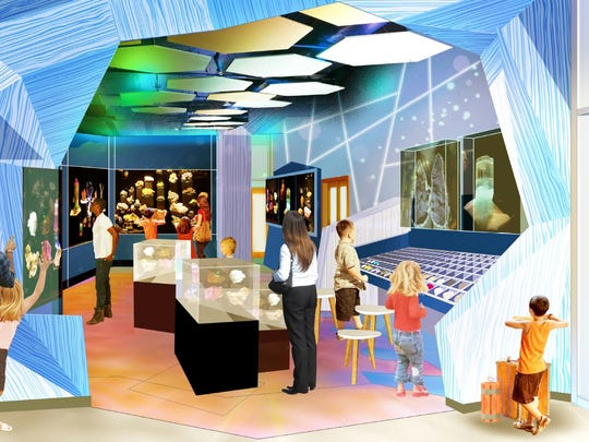 An artist's rendering shows what the hall of minerals exhibit will look like at the Asheville Museum of Science's new location.
