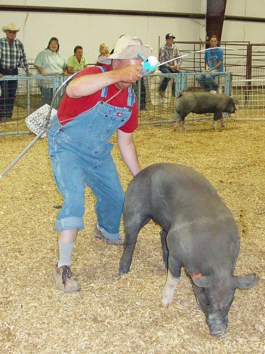 -Pig.jpg