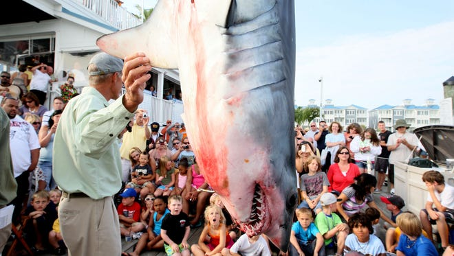 "Mark Sampson holds the fin, for the audience to see, of the first shark to be brought in to be weighed at the 2011 Ocean City Shark Tournament. It is a Mako weighing in at 174 lbs and 76"" long caught by Mike Schmidt of St. Marys Island."