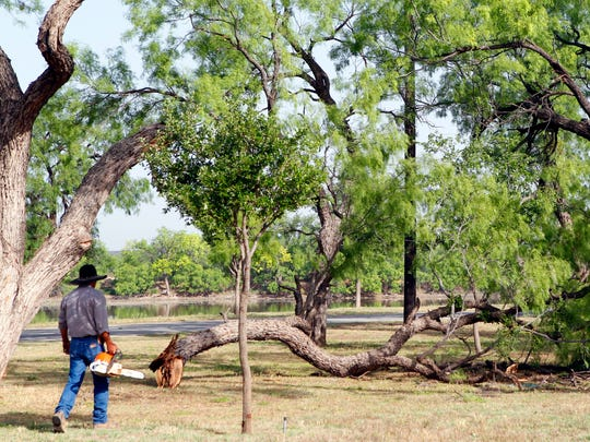 City of San Angelo lake operations crew member Patrick Lawhon uses a chainsaw to clear away debris and fallen tree limbs at Spring Creek Park near Lake Nasworthy after a storm in 2014.
