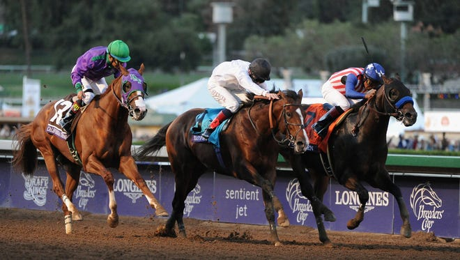 ARCADIA, CA - NOVEMBER 01: (L-R) Jockey Victor Espinoza atop California Chrome, jockey Jamie Spencer atop Toast of New York and first place finisher jockey Martin Garcia atop Bayern race to the finish line in the 2014 Breeders' Cup Classic at Santa Anita Park on November 1, 2014 in Arcadia, California.  (Photo by Harry How/Getty Images)