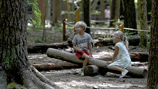 Twins Trey and Claire Clayton, 4, of Westerville play on a log seesaw Sept. 10 in the natural play area at Shale Hollow Park in Lewis Center. With parks more crowded this year, Preservation Parks staffers say they're seeing more damage, such as broken saplings and trampled ground.