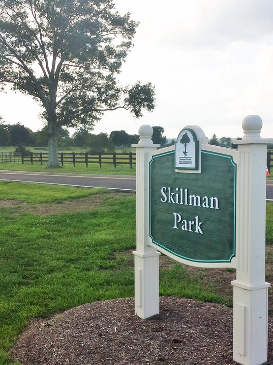 Skillman Park.jpg