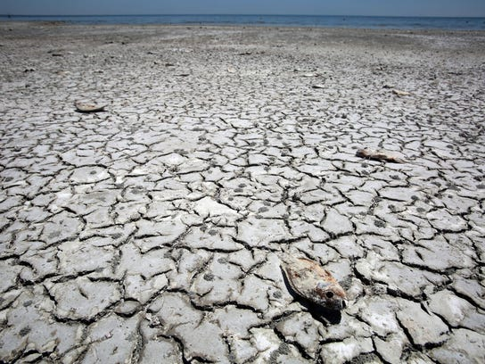 The Salton Sea has been shrinking for years, and its