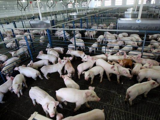 maxwell farms