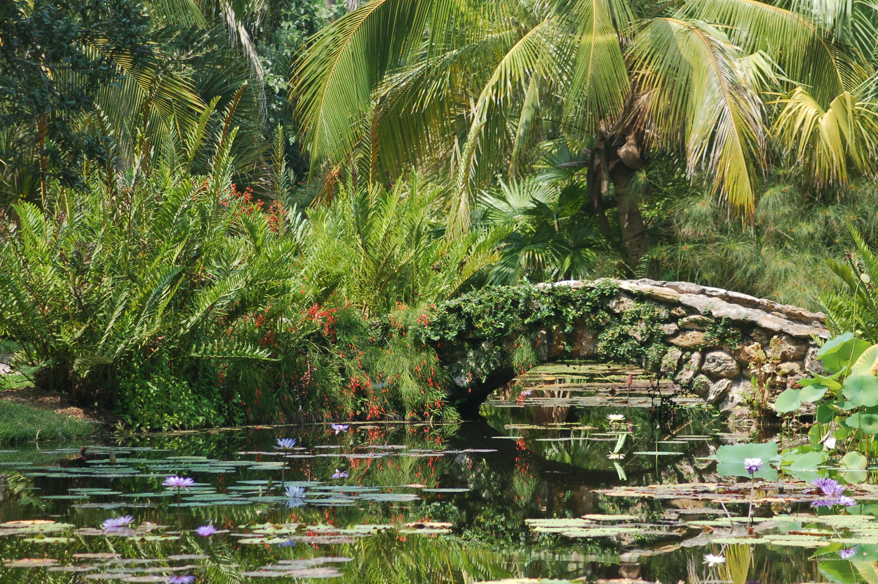 While In Vero Beach, You Should Visit The Historic Gardens At McKee  Botanical Gardens. The Boardwalk Near The Historic Jungle Trail Is Great  For Calorie ...