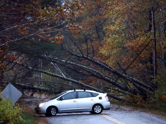 A motorist turns around after finding downed trees