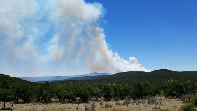 A photo of the aerial ignition is believed to have been taken west of the Soldier Prescribed Fire project in the Guadalupe Ranger District. The smoke is drifting in a northern direction.