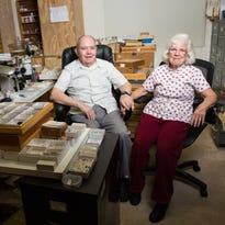 Bitten by the collecting bug: Arizona couple's insect collection valued at $10 million will go to ASU