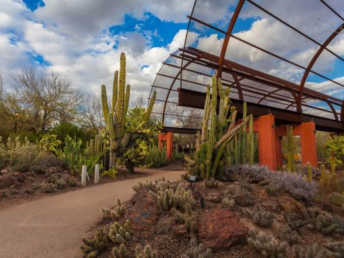 10 Ways To Get Out Enjoy Great Phoenix Weather